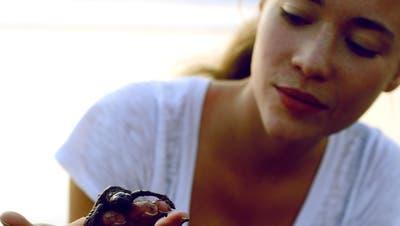 Freiämterin hilft Schildkrötenbabys ins Meer
