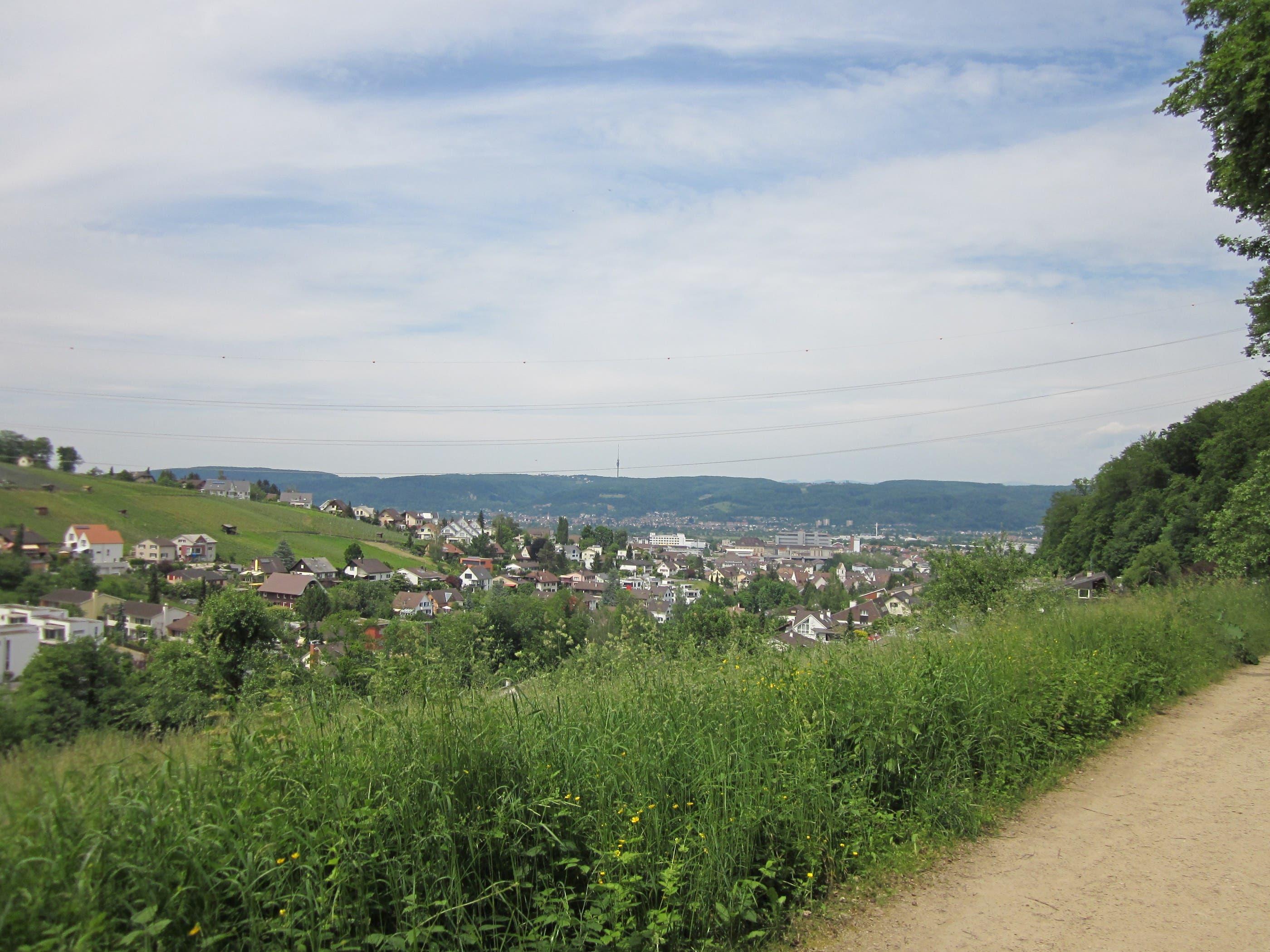 IMG_2160.JPG Blick auf Pratteln und den Fernsehturm Sankt Chrischona