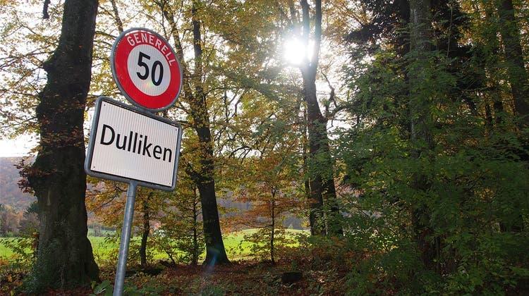 «Geben wir dem neuen Forstbetrieb Werderamt eine Chance»