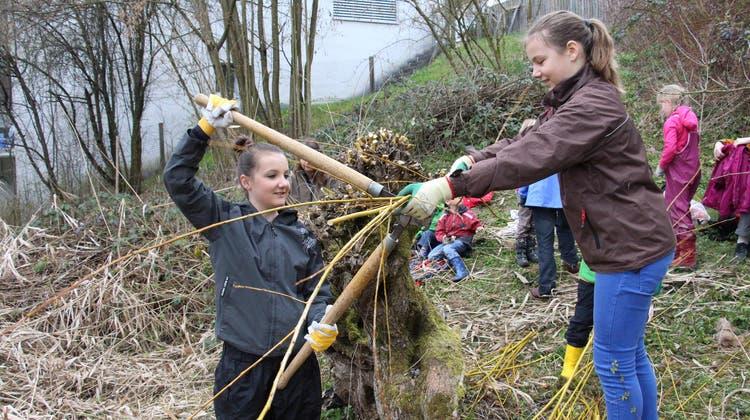 Diese Kinder hacken und schneiden der Natur zuliebe