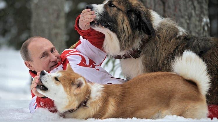 Nach über 30 Jahren ist Wladimir Putin ab heute wieder offiziell Single
