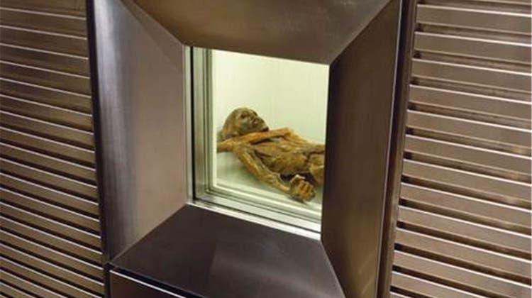 Das perfekte Klima für Ötzi kommt aus Wettingen