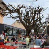 Ein Stück Bayern für das Restaurant Baldegg