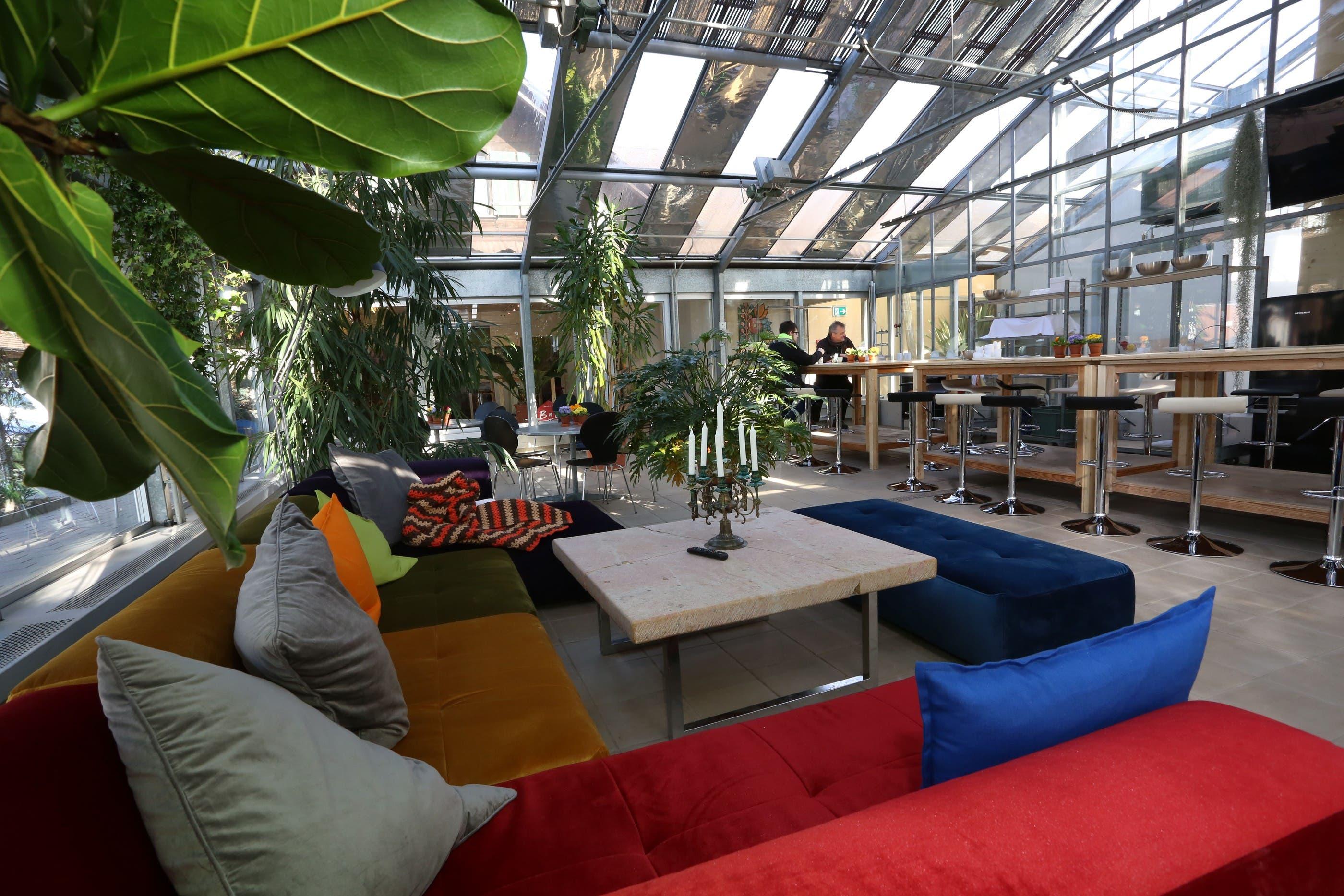 Bed&Breakfast in ehemaliger Gärtnerei in Härkingen
