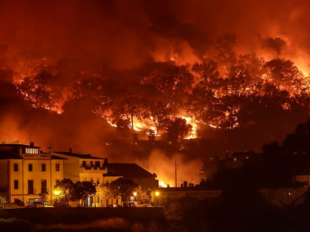 Waldbrände wie hier an der Algarve wüten zunehmend im Sommer in Portugal.