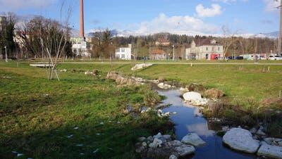 Bund und Kanton finanzieren einen Grossteil der Kosten für Arbeiten am Späckgraben