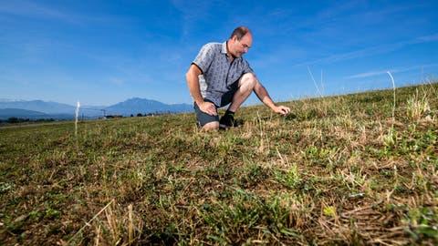 Landwirt Joe Schnider auf einem vertrockneten Feld. (Bild: Philipp Schmidli (Ballwil, 29. Juli 2018))