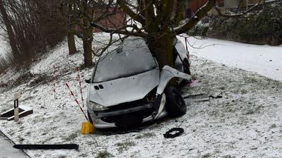 Den Zusammenprall mit diesem Baum hat der Fahrzeuglenker nicht überlebt. (Bild: Luzerner Polizei)