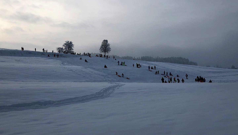 Über 50 Menschen schlitteln an diesem Hügel in Wilen. (Sebastian Keller)
