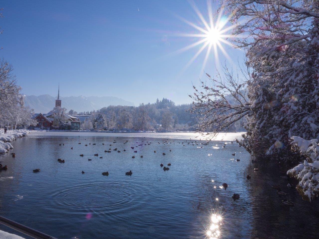 Blick auf den Werdenbergersee.