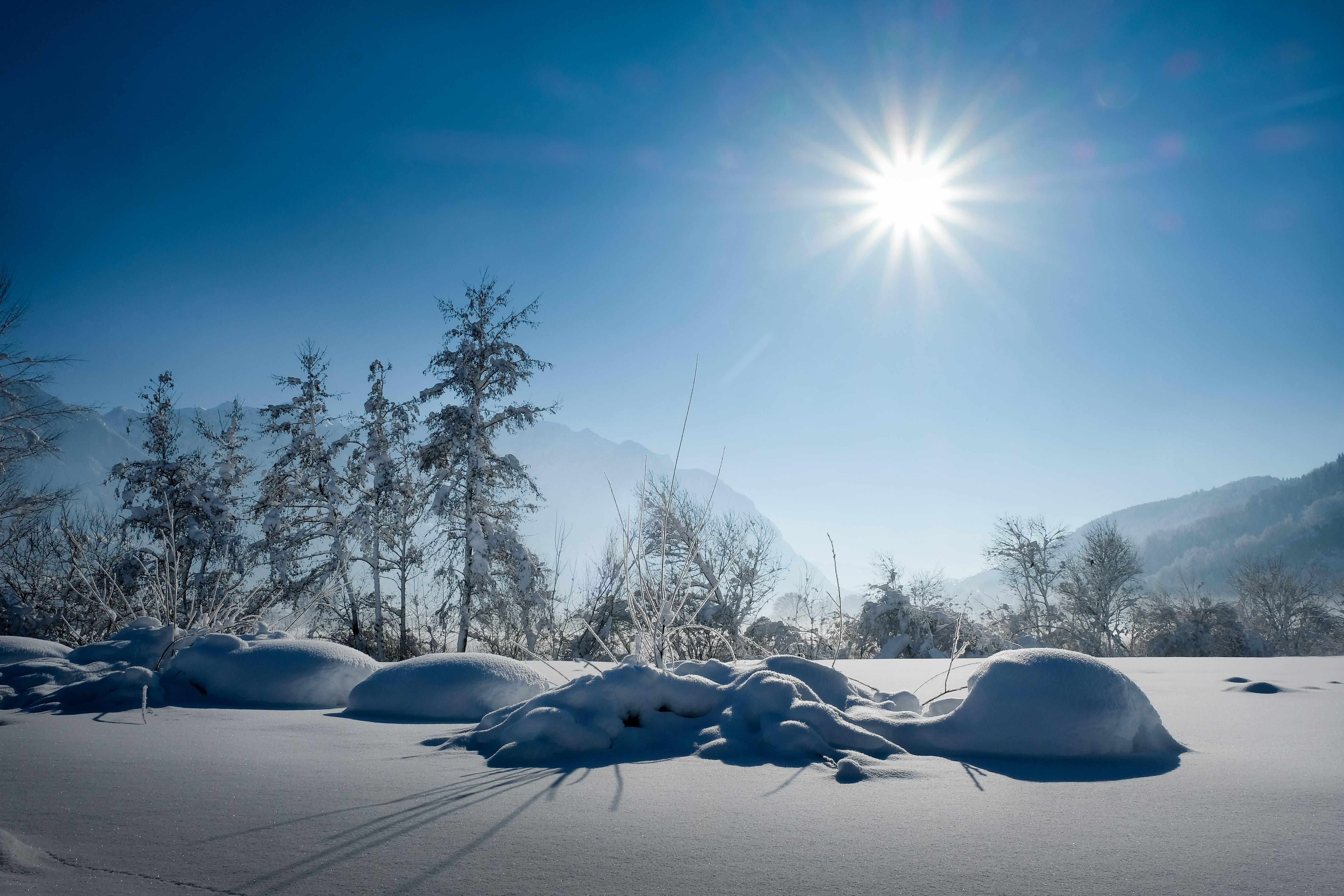 Am Samstag gab es viel Sonnenschein zu geniessen. Dieses Bild entstand in Sevelen.