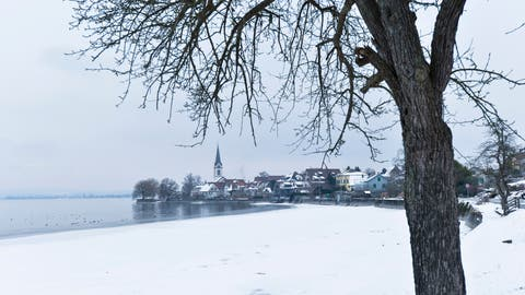 Winterliches Berlingen, inklusive Eisschicht entlang des Seeufers. (Bild: Donato Caspari (Berlingen, 7. Januar 2017))