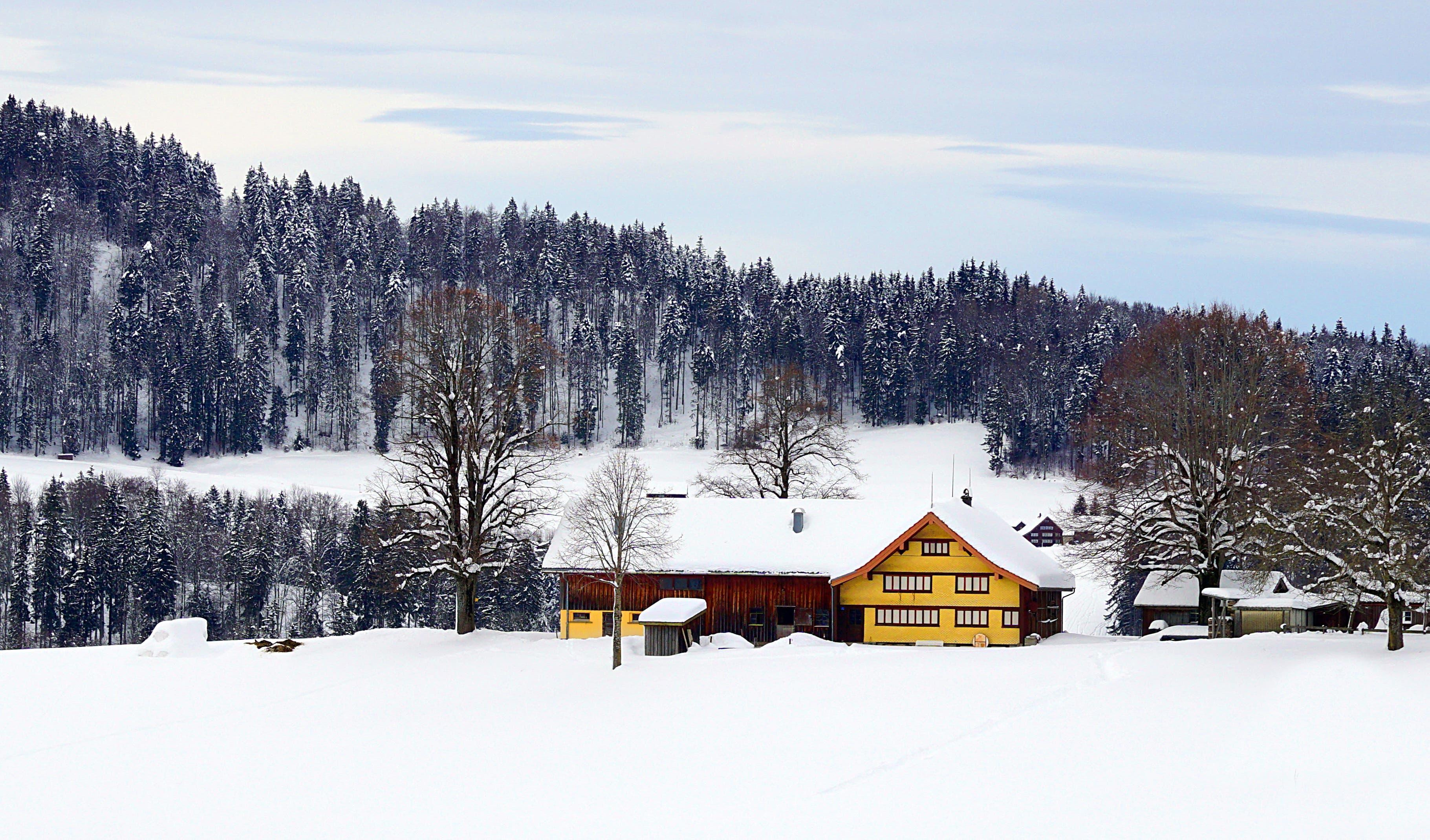 Ein Appenzellerhaus im Schnee.