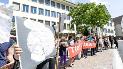 Tierschützer demonstrierten auf dem Höhepunkt des Tierschutzskandals in Hefenhofen vor dem Rathaus Frauenfeld. (Bild: Donato Caspari (16. August 2017))