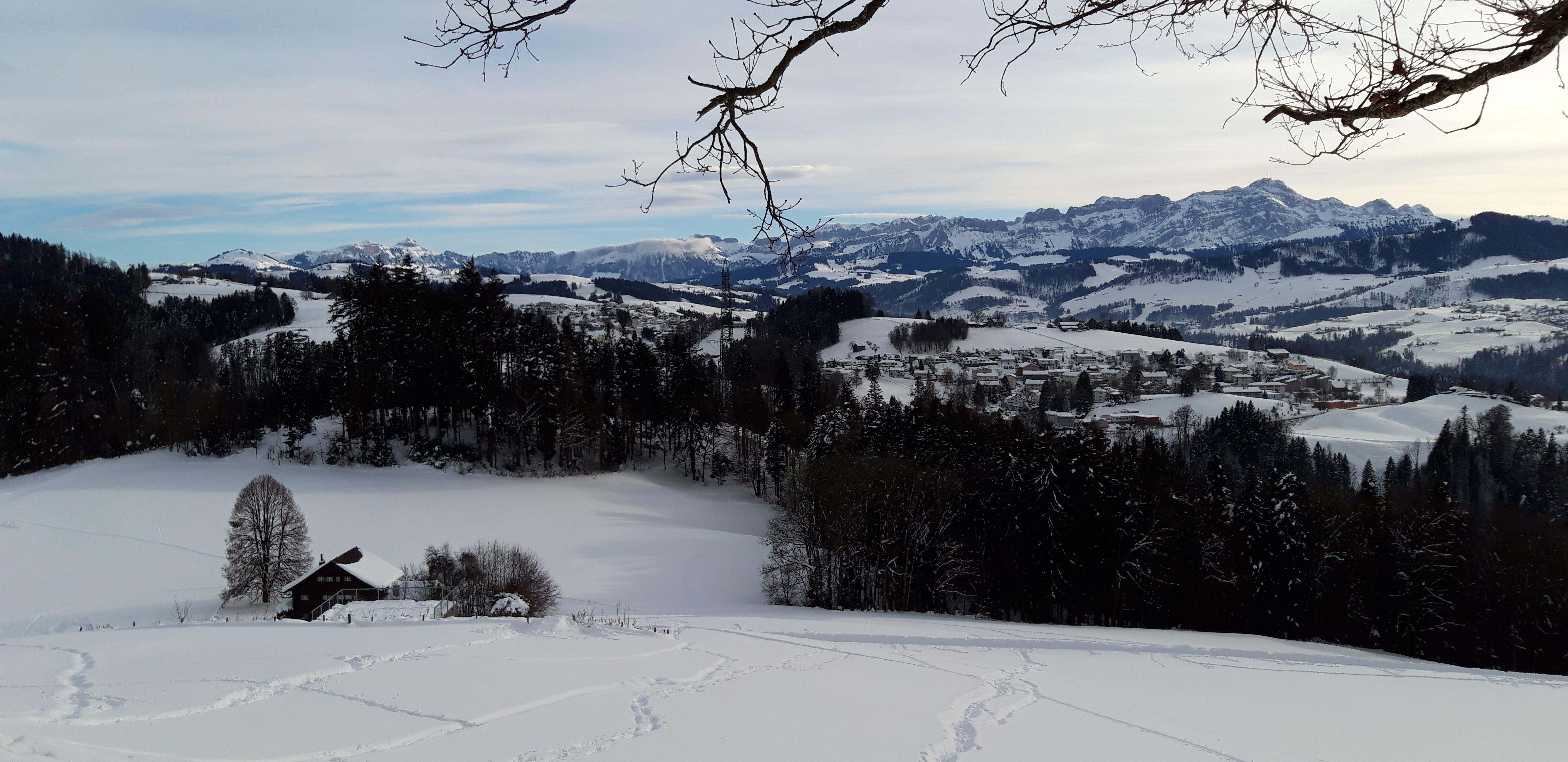 Föhnige Aufhellungen über dem Alpstein in Menzlen.