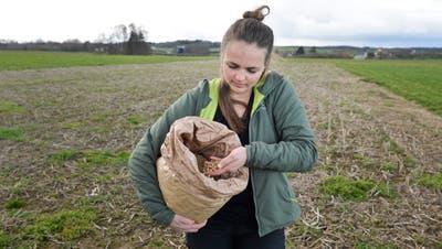 Simone Reinhart verwendet für ihren Tofu Thurgauer Biosoja aus der Region. Auf dem Hof ihrer Eltern baut sie heute keinen Soja mehr an. (Bild: Donato Caspari (9. März 2020))