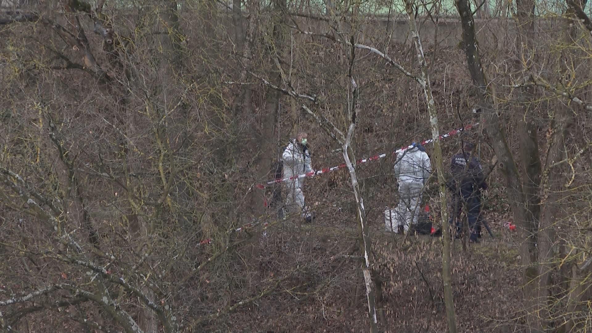 Am Dienstagnachmittag wurde am Ufer der Limmat in Würenlos eine Leiche gefunden.