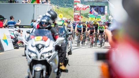 Anders Stokholm und Urs Steppacher, Präsident und Vizepräsident Tour de Suisse Hub Frauenfeld, besichtigen die mögliche Strecke. (Bild: PD)