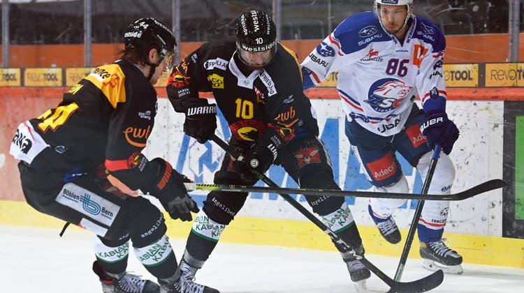 Die Berner um Andre Heim (links) und Christian Scherwey waren bemüht, Dario Trutmanns Zürcher effizient. (freshfocus)