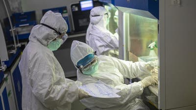 Dringend gesucht: Medikamente gegen das Corona-Virus