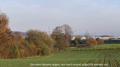 «Massive Veränderung der Landschaft»: Naturschützer machen mobil gegen geplante Deponie Steindler