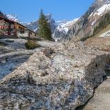 Schnee schmilzt, Lawinenschäden zeigen: Im Alpstein entging man knapp einer Katastrophe