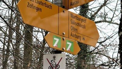 Malträtierte Waldpfade sorgen für Ärger: Würde ein spezieller Trail für Entspannung sorgen?