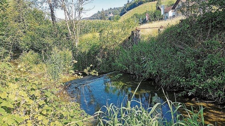 Das Mühle-Kraftwerk wird rückgebaut
