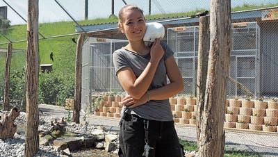 Solidaritätswelle rettete Vogelpark Ambigua: «Die Hilfsbereitschaft ist einfach unglaublich»