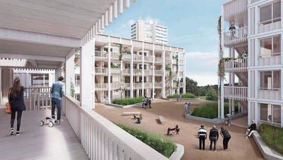 220 Wohnungen für 95 Millionen Franken: Grosses Bauprojekt im Brisgi-Areal wird noch grösser