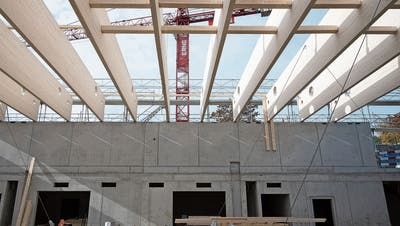 Neue Turnhalle nimmt Formen an: Die Elemente aus Schweizer Holz sind da