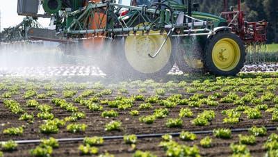 Pestizidreduktion: Auch Kommission des Nationalrats fürinoffiziellen Gegenvorschlag
