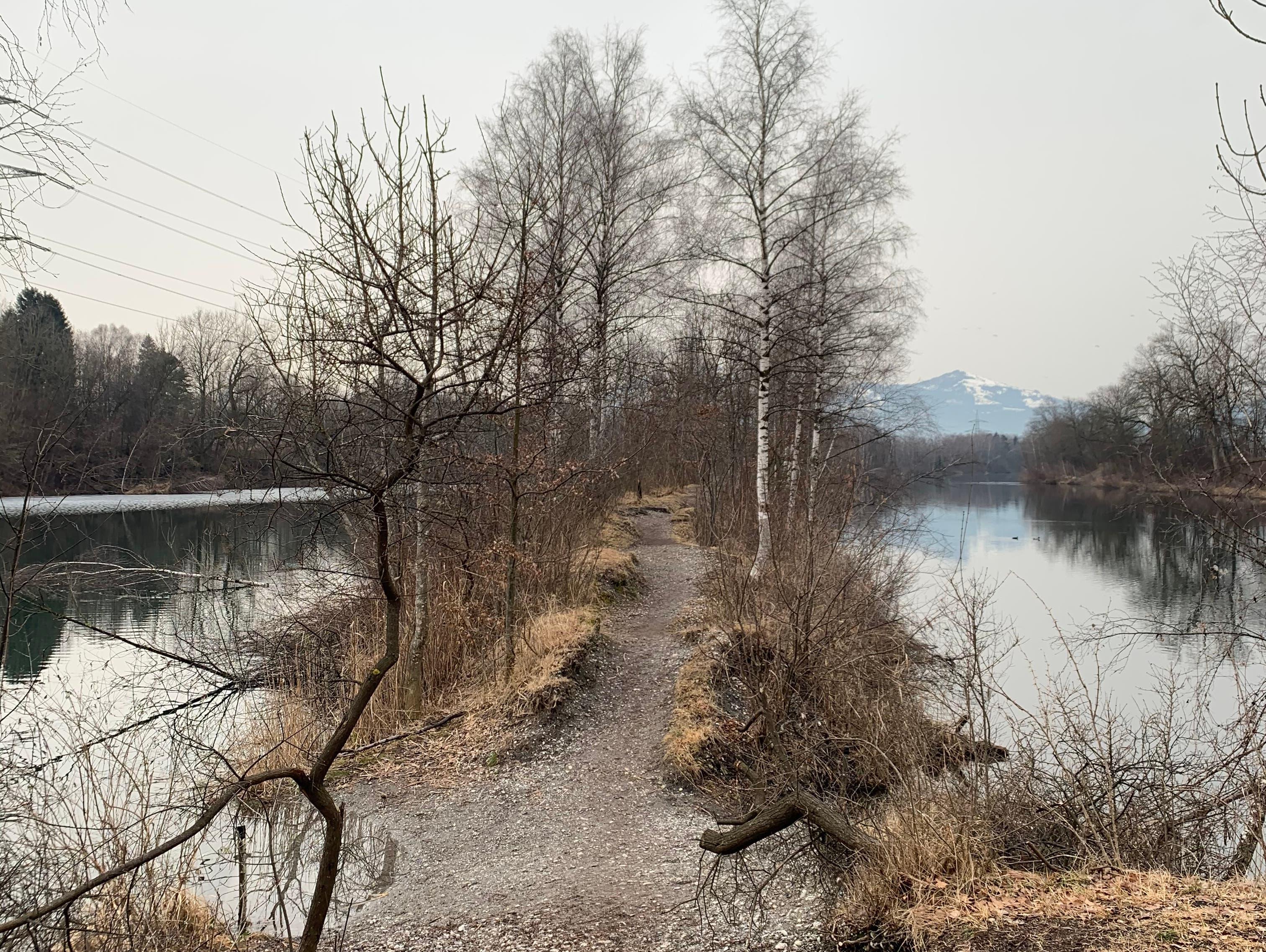 Das Highlight der Route: Der Wanderpfad mitten auf dem Alten Rhein, entlang der österreichischen Grenze. Dorthin müssen wir jedoch erst kommen – wir starten am Zollamt Hohenems.