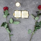 Stolpersteine gegen das Vergessen: Verein will auch in Basel an die Holocaust-Opfer erinnern
