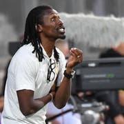 Senegal's Trainer Allou Cissé während des Spiels zwischen dem Senegal und Luxembourg. (AP Photo/Geert Vanden Wijngaert)