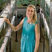 Lüftet Rätsel der Natur: die in Luzern wohnhafte Meeresbiologin Sara Stieb. (Bilder: Nadia Schärli, Kastanienbaum, 24. Juni 2019)