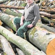 Franz Röösli mit Holz, das dereinst zu Kohle wird. (Bild: Eveline Beerkircher, Romoos, 23. Januar 2018)