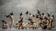 Die Tänzerinnen und Tänzer des Balletts Zürich erschaffen Bilder einer albtraumhaften Welt. (Bild: Gregory Bartadon)