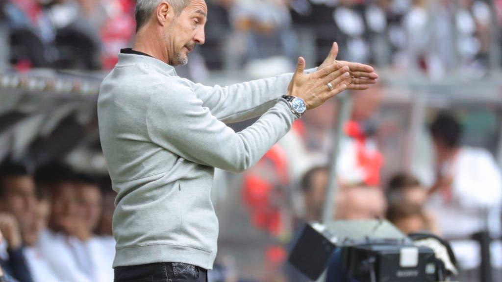 Eintracht Frankfurt Newsticker