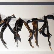 «Tanz mit dem Wind» aus Bananenschalen und Draht: eines von Elisabeth Ottenburgs Werken in der Stadtgalerie Baliere. (Bilder: Dieter Langhart)