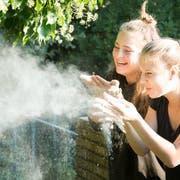 Der Wiler Stadtrat beantragt dem Parlament, die künftige Oberstufe ohne die Mädchensekundarschule St.Katharina zu planen. Die Aufnahme zeigt Kathi-Schülerinnen in einem Workshop zum Thema Stein. (Bild: PD)