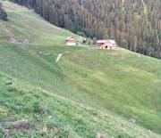 Die Alp Bleiki oberhalb von Niederrickenbach leidet unter der Trockenheit der vergangenen Wochen. (Bild: PD (7. August 2018))