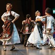 Zeljko Sucevic ist Präsident des Serbischen Tanzvereins. (Bild: Laura Manser)