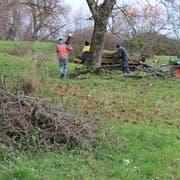 Emil Gsell und die freiwilligen Helfer legen kräftig Hand an im Naturschutzgebiet. (Bild: Markus Bösch)