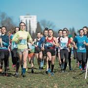 400 Läuferinnen und Läufer sorgten am 24. Februar 2019 beim Lozärner Cross für einen Teilnehmerrekord. (Bild Dominik Wunderli)