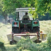 67 Bauernbetriebe mussten im vergangenen Jahr in der Ostschweiz aufgeben. Hingegen steigt die Zahl der Beschäftigten in der hiesigen Landwirtschaft wieder leicht an. (Bild: Donato Caspari)