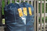Ab dem 1. Januar 2020 werden solchermassen bereitgestellte Abfallsäcke von der Kehrichtabfuhr nicht mehr mitgenommen. (Bild: Karin Erni)