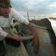 Ein Arbeiter am Isolieren: Der Energiebedarf in Gebäuden soll auf Geheiss von Bund und Kantonen gesenkt werden. (Bild: Urs Bosshard)
