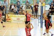Mit dem 3:0 gegen Glaronia ist Volley Toggenburg ein perfekter Saisonstart geglückt. (Bild: Reinhard Kolb)