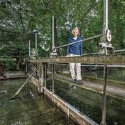 Josef Hofer auf dem Wehr, das durch eine moderne Anlage ersetzt werden soll. (Bild: Pius Amrein, Oberkirch, 28. August 2018)